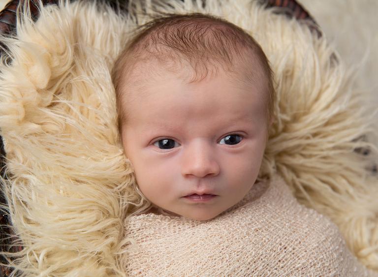 Newborn baby photographer toowoomba darling downs sarah gage photography 2
