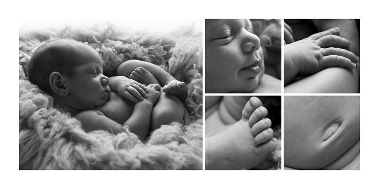 Newborn photographer toowoomba4